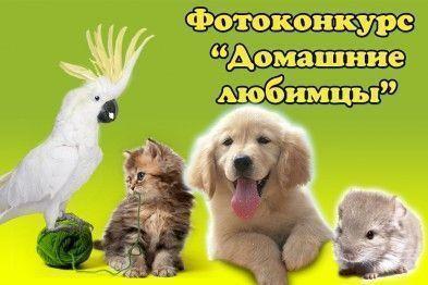 obshina_137778270463