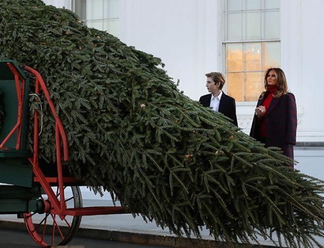 Белый дом готовится к праздникам: Мелания Трамп с сыном проконтролировали установку рождественской елки