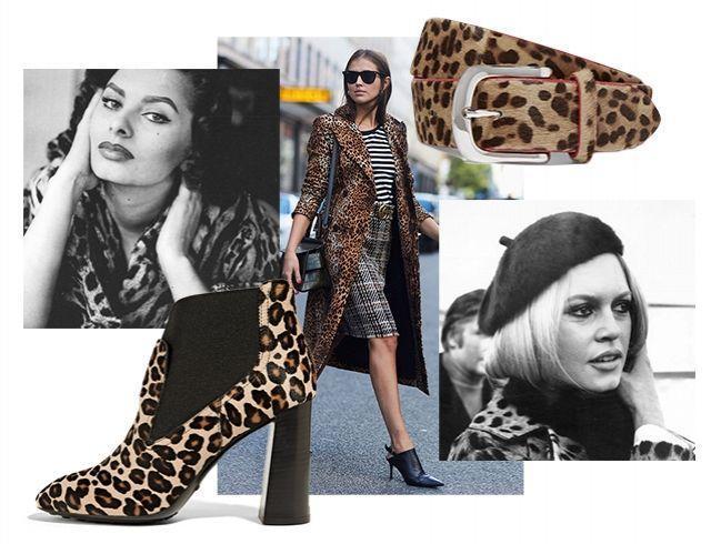 Почему леопардовый принт — больше не признак безвкусицы: как носить одежду с леопардовым принтом этой осенью