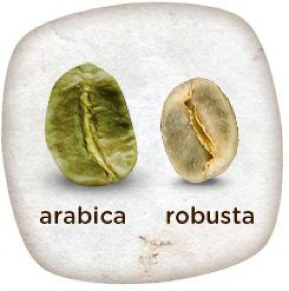 На купаже или на арабике? Как не сойти с ума в кофейне