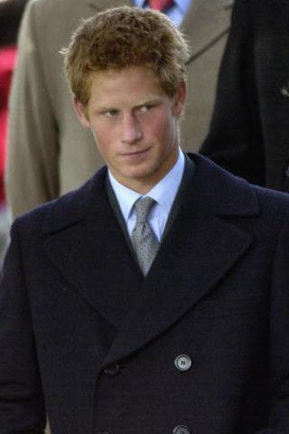 Гарри обзаведется пышной шевелюрой к свадьбе, а следом и Уильям