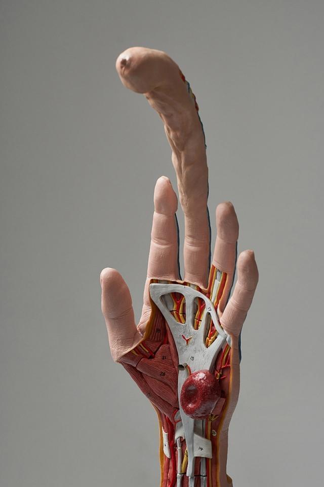 Корейский дизайнер изобрела стильный женский оплодотворитесь: в виде руки