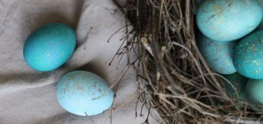 Пасха: как покрасить яйца капустой в небесный цвет своими руками