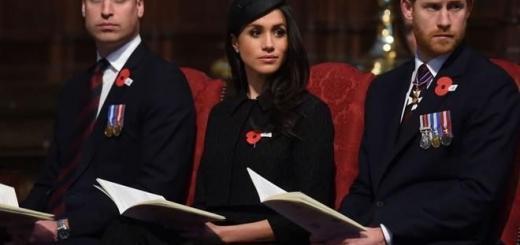 Пока Кейт в декрете: Меган вышла в свет с обоими принцами