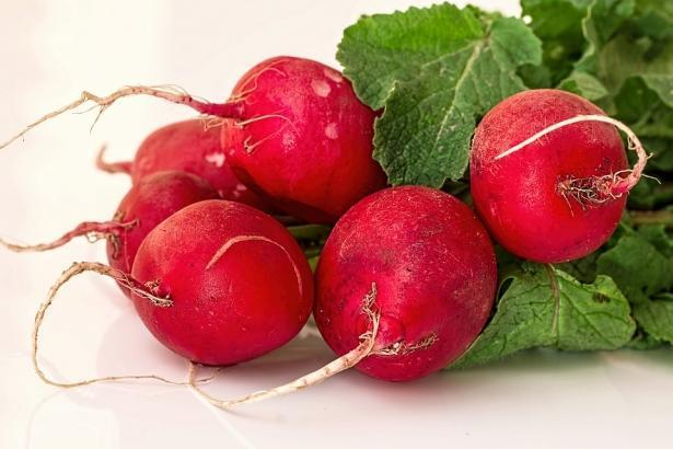 Польза и вред редиса: что надо знать о любимом сезонном овоще