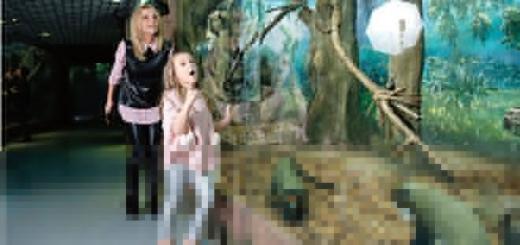 Дарья Сагалова: «Не могу оторваться от детей, а что будет с профессией, все равно»