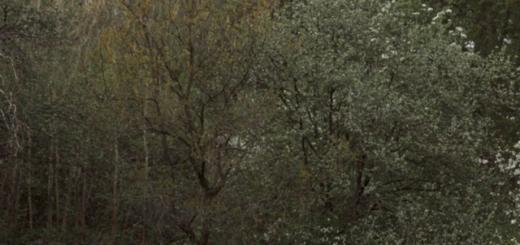 Сергей и Снежана Бабкины снялись в откровенной фотосессии к 10-летию со дня венчания: ФОТО
