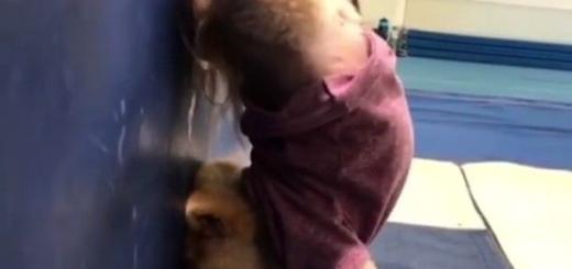 Внимание в Instagram: пес ходит в настоящий человеческий спортзал