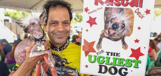 Найдена самая страшная собака в мире