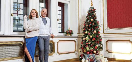 Джанабаева и Меладзе рассказали, какими игрушками нарядили елку