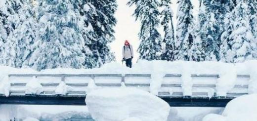 Гороскоп на 21 декабря: из горя есть только один выход — в счастье