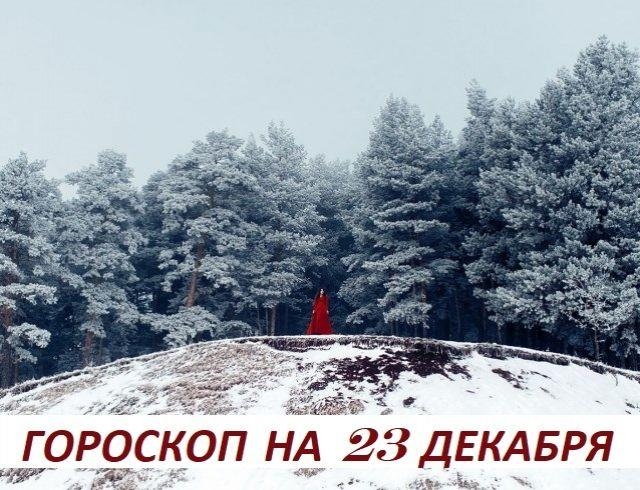 Гороскоп на 23 декабря: прекрати сажать цветы в сердцах тех людей, которые не будут их поливать