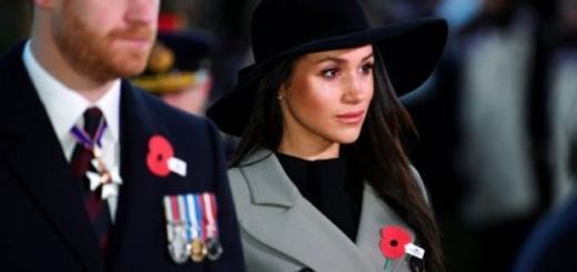 """""""Безжалостная карьеристка, которая очаровала принца"""" – известный журналист жестко высказался о Меган Маркл"""