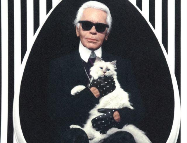 Знаменитая белая кошка Карла Лагерфельда запускает линию одежды в память о дизайнере