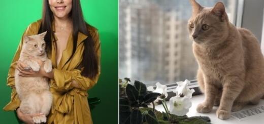 Телеведущая Иванна Онуфрийчук рассказала о своей единственной любви