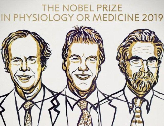Нобелевская премия 2019. Кто стал лауреатами в области медицины и физиологии?