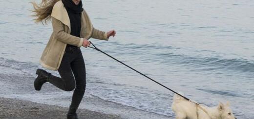 Гороскоп на 12 октября 2019: не сделав шаг вперед — не сдвинешься с места