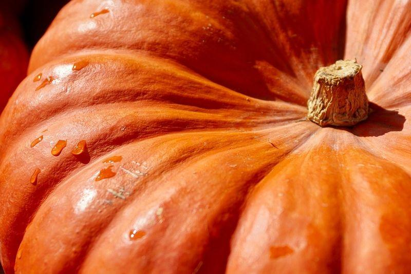 Невероятная польза тыквы: все, что вы хотели знать о любимом символе осени